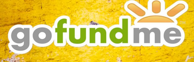 Donate To Fiona's Go Fund Me